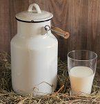 Imagen destacada curso productos lácteos 2019
